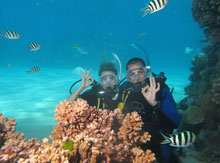 Scuba Diving on the Great Barrer Reef