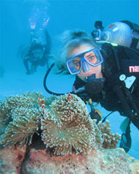 Scuba Diving on the Outer Reef