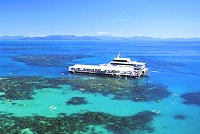 snorkelling great barrier reef