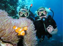 Cairns Liveaboard Diving Trips